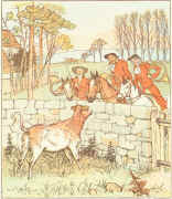 Bull-calf from Jovial Huntsmen (Warne edition). Click to enlarge.